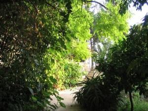 מעלה הרימון - גן חבוי