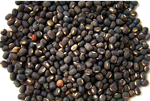 urad dal, אורד דל, דוסה, חלבון מן הצומח, טבעוני, אוכל טבעוני, קרפ, קרפים, פנקייק, מתכון, מתכון צמחוני, אוכל בריא