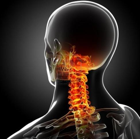 גב תפוס, צוואר תפוס, שרירים תפוסים, שחרור שרירים תפוסים, וואטסו