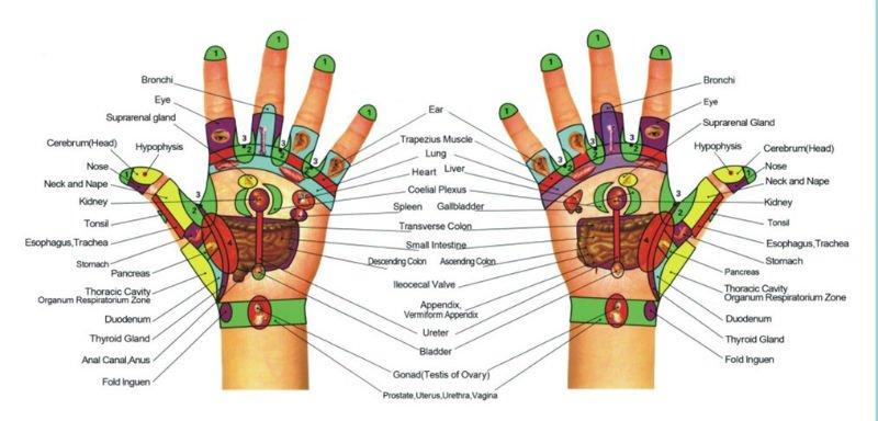 טבעת סוגוק - יד