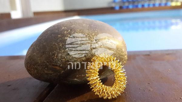 sujuk ring - טבעת סוג'וק