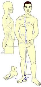 מרדיאן הכליות - שחרור שרירים תפוסים