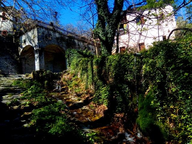 Tsagkarada המעיין מתחת לעץ הדולב העתיק ביותר באירופה צגרדה,יוון
