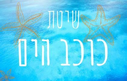 שיטת כוכב הים