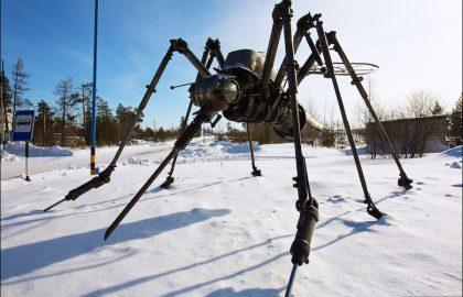 יתושות. לא להיות
